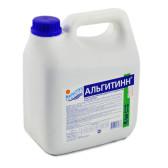 Альгитинн_3
